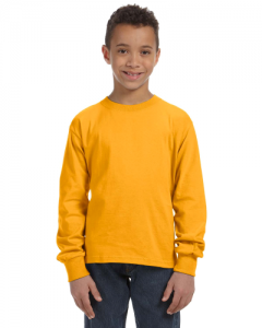 Youth 5 oz 100 Heavy Cotton HD Long Sleeve T Shirt
